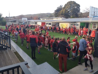 A Sea of Red
