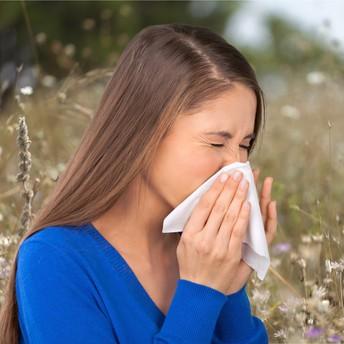 Documented allergies