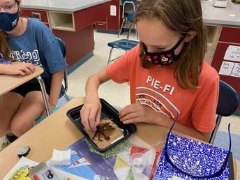 Students Attend Summer Science Enrichment Program!