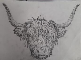 Amelia G - Year 10 Art