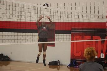 Cedar Hill Volleyball Season Preview