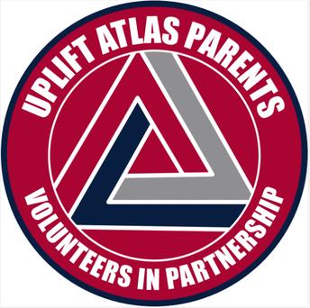 What is Volunteers in Partnership (ViP)?