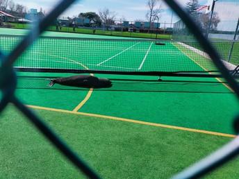 A game of tennis anyone?