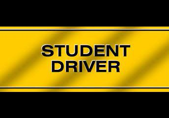 Do you need a Verification of Enrollment (VOE) Form for your driver's permit?