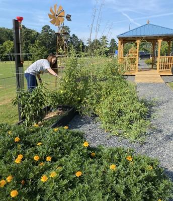 Alcova Garden Training
