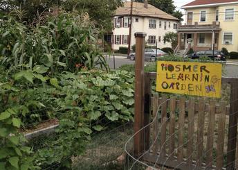 Help Take Care of the Hosmer Learning Garden