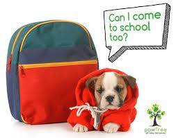 Pets on School Property