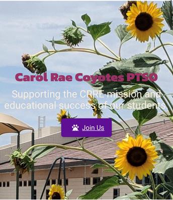 PTSO Website