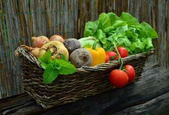 Garden Research