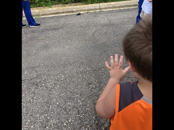 Waving to the turtle