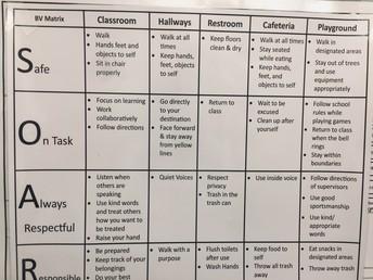Schoolwide Behavior Expectation Matrix