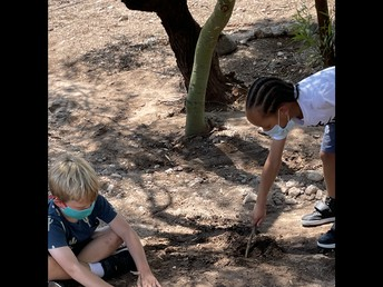 Students Enjoy Our Newly Cleared Tree Area at Recess