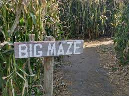 SEPTEMBER 23 - WELCOME BACK PICNIC & CORN MAZE- LETHBRIDGE
