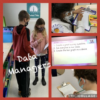 Mrs. Barton's students dig into data!