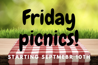Friday Picnic lunch!
