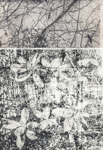 In A Landscape: Artist Curtis Shannon at Kennedy-Douglass Center for the Arts
