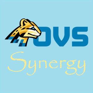OVS SYNERGY