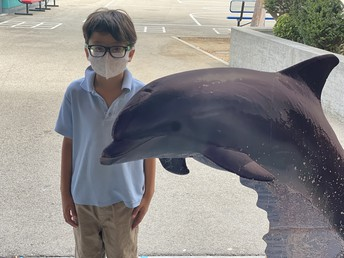 1st Grade Meets our School's Dolphin!