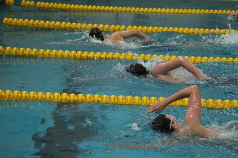 Academic All-American Swimmers from West Genesee