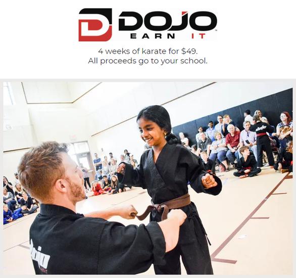 Summer DOJO Camps Support SCES