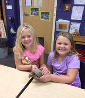 Students enjoyed Ed the Box Turtle.