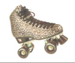 DuJardin's Fall  Roller Skating Party