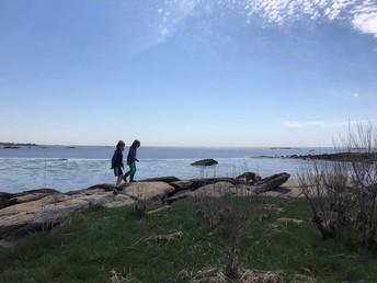Chaffinch Island and Grass Island