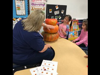 Comparing Pumpkin Sizes in Mrs. Schneider's Class.