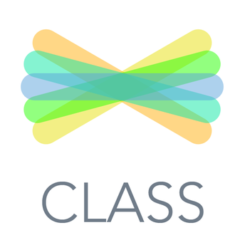 image of Seesaw icon