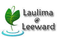Monday 8/17 - Laulima Challenge
