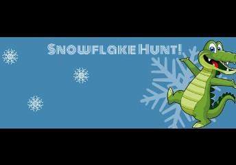 SNOWFLAKE HUNT