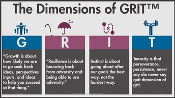 Dimensions of Grit