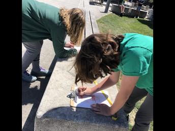 Measuring the Perimeter