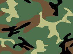 Wednesday- Military/Camo Day