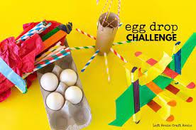 Annual First Grade Egg Drop Challenge
