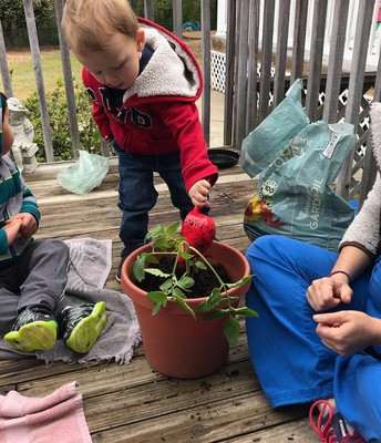 Toddler Planting