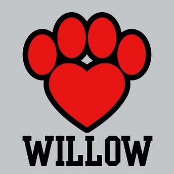Willow School
