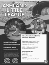 2020 Little League