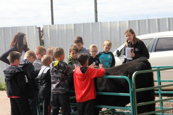 YQCA (YOUTH FOR QUALITY CARE OF ANIMALS)