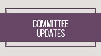 BOUNDARY COMMITTEE UPDATES