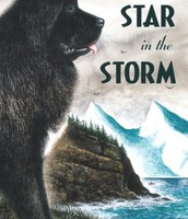 Star in the Storm