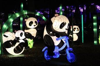 Chinese Lantern Festival Spirit Event