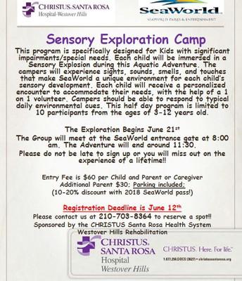 Sensory Exploration Camp