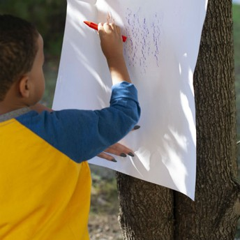 Tree Rubbings Activity