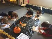 Pumpkin Seed Predictions