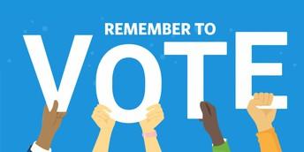 PLEASE VOTE - FEBRUARY 9th in Mount Vernon