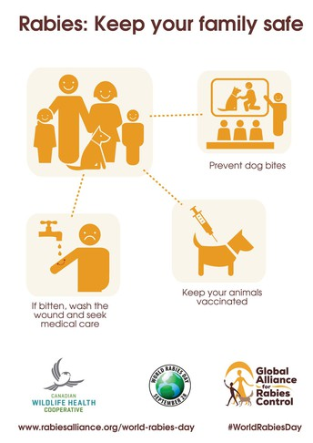 Rabies Awareness & Prevention Poster Contest for K-12