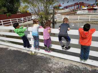 Kindergarten Pumpkin Farm Field trip!