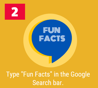 2. Fun Facts