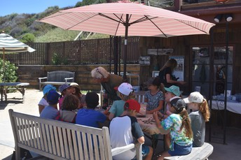 Community Days at Crystal Cove Conservancy